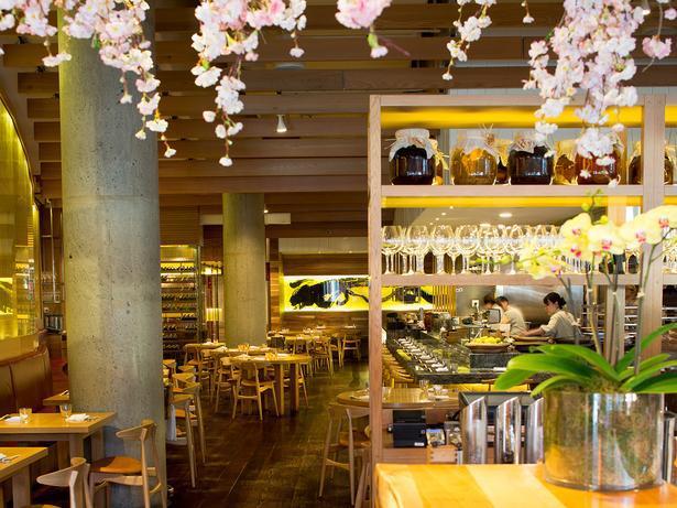 The Best Auckland Restaurants Of 2017