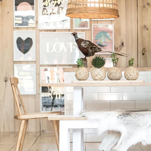 14 Top Design Stores Around NZ. 14 Top Design Stores Around NZ   Viva