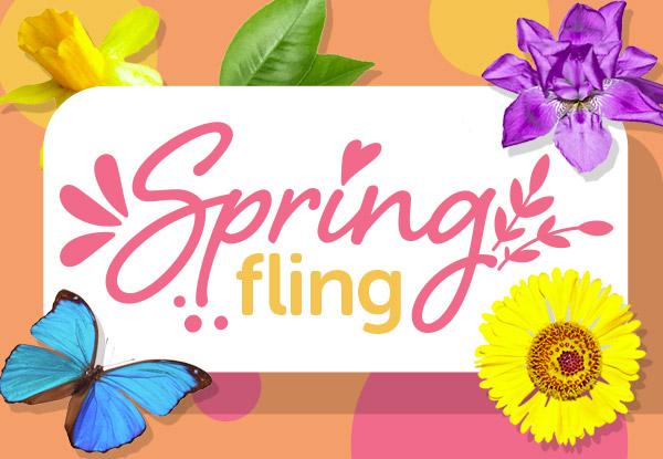 Dunedin invercargill deals grabone nz spring fling gumiabroncs Images